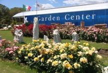 Garden  Center Capoterra (CA)