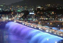 서울 나이트