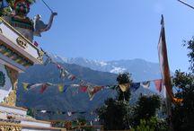 """rondom de residentie van Z.H. de Dalai Lama / Mcleod Ganj, voorstadje van Dharamsala in het Kangra district van Himachal Pradesh, India. Ook wel """"Klein Lhasa"""" genoemd vanwege de vele Tibetaanse vluchtelingen. De Tibetaanse regering in ballingschap heeft hier haar hoofdkwartier en Zijne Heiligheid de Dalai Lama heeft hier zijn residentie en tempel de Tsuglag Khang. Elke ochtend om 07.00 uur liep ik de kora (meditatieve omloop) rond dit complex. Hier wat impressiefoto's."""