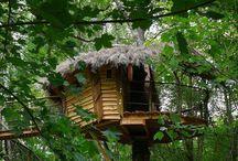 casa sull'albero e sull'acqua