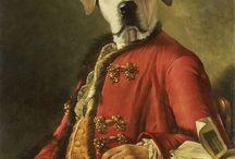 Hund Portraits