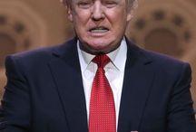 Trump x Stupid