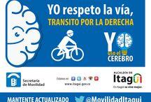 Yo Uso el Cerebro / Educación Vial / Campaña de la Alcaldía de Itagüí y la Secretaría de Movilidad para sensibilizar a la población acerca del buen comportamiento    en la vías y el buen uso de los vehículos.