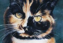 Cat portraits - my paintings and drawings / Cat portraits paintings in oils on canvas, plus drawings
