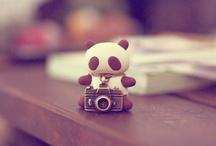 So Tiny / by Nelda Rocha