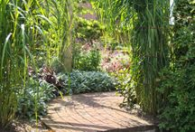 Amazing garden designs / Amazing garden designs by Isola Garden Design. We wholeheartedly recommend this company, as we have worked with them on several occasions and are always wowed by their garden designs and workmanship!