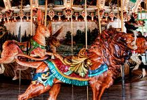 carousel / by Kathleen Mereand