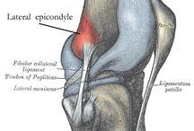 Overuse injuries of knee
