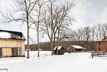 Winter In Elgin