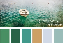 Pretty Color / by Lisa