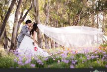 Wedding / Beautiful