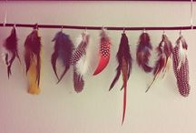 Feathers by Alice