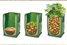 Design grönsaksland