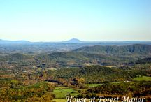 Mountains / Scenes of the Blue Ridge and Great Smoky Mountains