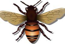 μελισσουλες