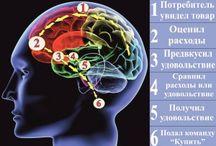 Нейромаркетинг и психоанализ рекламы