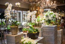 negozi fiori idee arredamento