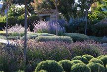 Jardins / Jardins Rústicos