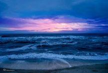beach / by Sherry Pitman