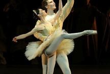 Ballet / Just because someday I will be a ballerina...