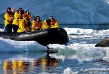 Antarctica & the Arctic / 0