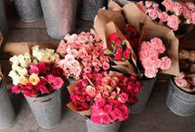 Flower ideas / by Melissa Hitt-Moody