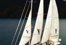 帆船 vitorlás