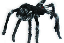 Be Kind to Spiders Week / Who wouldn't want to celebrate Be Kind to Spiders Week? Those 8 legged critters inspire Spirit all the time, so we want to return the favor! / by Spirit Halloween