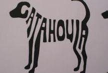 Catahoula