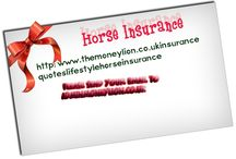 Horse insurance UK