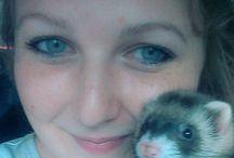 Vote for my ferret!!!