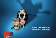 ADV 2015 / La nuova campagna stampa Giuntini: teneri nell'aspetto, spaventosi nell'alito.