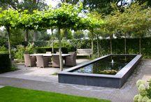 Садовый пруд особенности