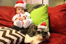 Kids & Pets / Awesome advice, tips and tricks on how to have kids with pets!