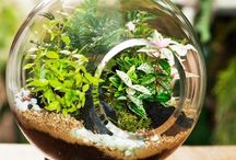 We're feeling green / Random eco-friendly and green inspiration.