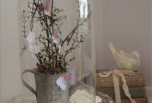 Under Glass / by Kathy Leonard