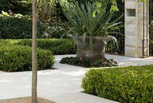 Arabic gardens