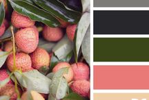 Design > Color
