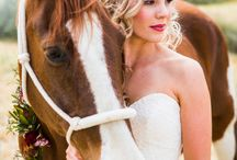 Wedding & Horse