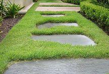 Pathways & Terrace
