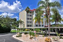Bays Bluff / Sarasota, Florida