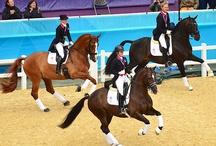 Equestrian Sports / by Jordan