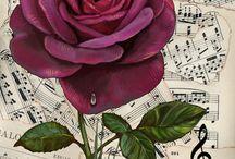 Blommor, rosor mm