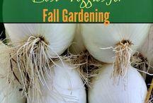 Gardening & farming / by Suzanne Monk Clark
