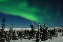 Alaska's Winter Wonders / 8 Day land tour focusing on Alaska's natural winter beauty. Enjoy leisurely mornings, days full of Alaskan winter activities, and nights spent viewing the Northern Lights. A photographers dream trip!