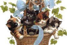 Zwierzaki - koty