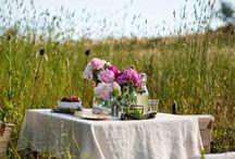 picnic photo ideas