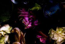 Dark flower prints