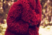 Fashion : Fur