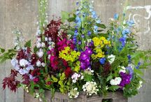 Flowers from the garden / Flowers and floral arrangements you can pick from your garden